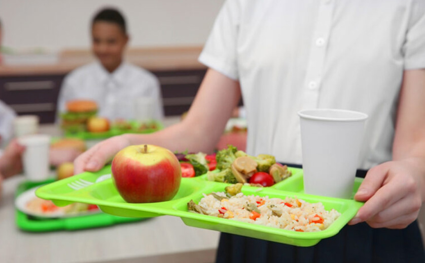 Close up of school lunch tray being carried by child in lunchroom